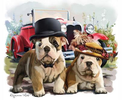 Обои Бульдоги в шляпах Mr. and Mrs. Abramson стоят перед красной машиной, by lorri-kayenna