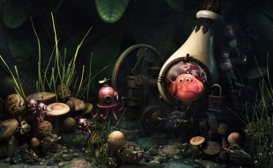 Обои Забавные животные под водой