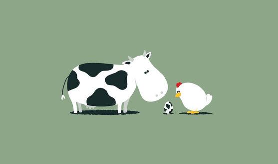 Обои Корова и курица смотрят на пятнистое яйцо