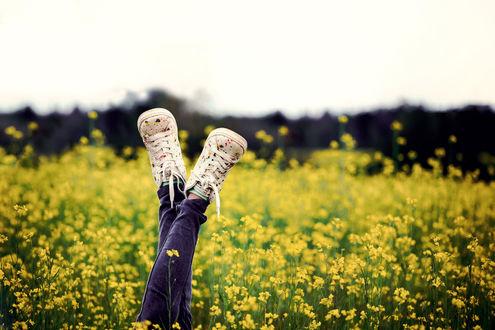 Обои Ножки в кедах в цветущей траве, фотограф Gabriela Tulian
