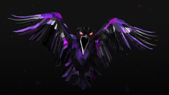 Обои Кричащий ворон с черными и фиолетовыми перьями