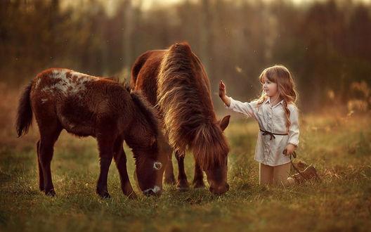 Фото красивые дети с лошадью