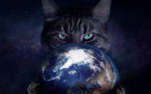 Обои Полосатый кот держит в лапах планету