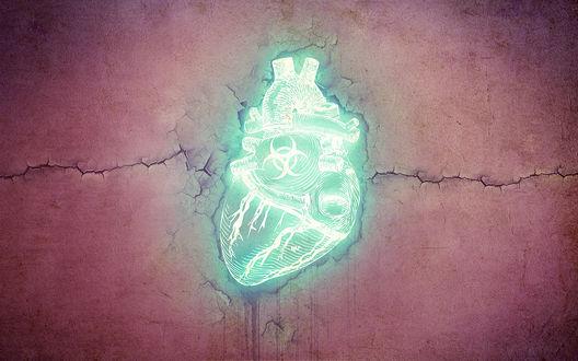 Обои Неоновое сердце со знаком биологической опасности на фоне стены