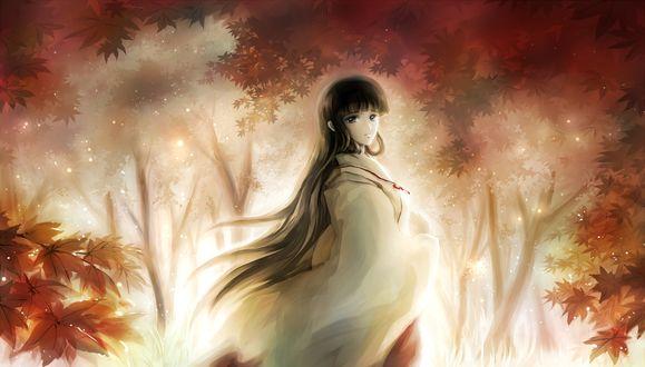 Обои Восточная девушка в осеннем лесу