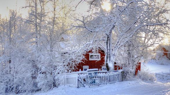 Обои Красный дом, окруженный заснеженными деревьями