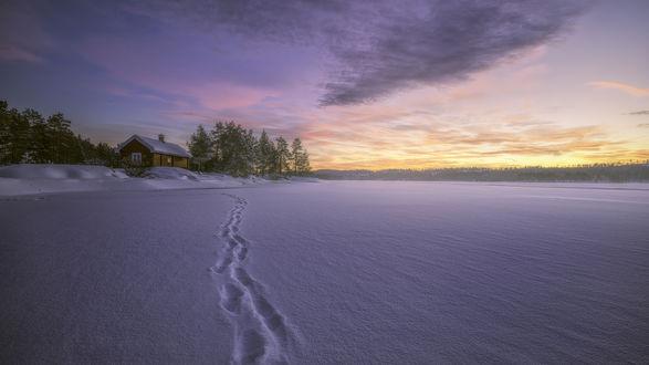 Обои Тропа на снегу, ведущая к деревянному дому