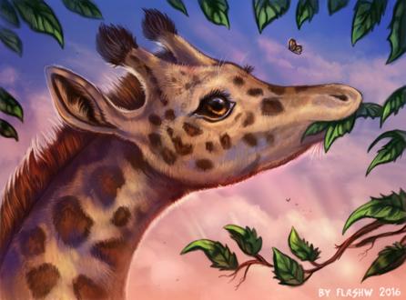 Обои Жираф кушает с дерева листочки, by FlashW