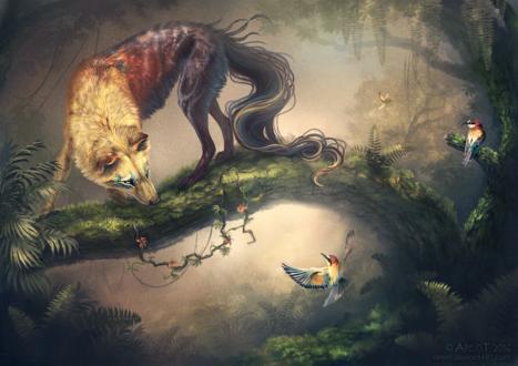 Обои Волк смотрит на птицу, by areot
