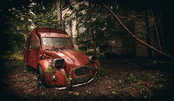 Обои Старая машина марки citroen стоит в леске у здания