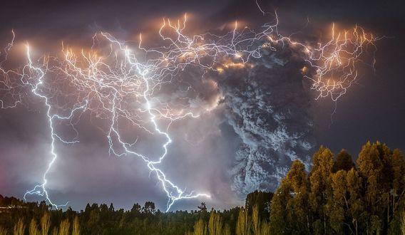 Обои Грозовой разряд молнии над лесом