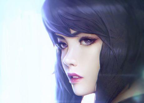Обои Девушка с длинными волосами и фиалковыми глазами, by Paul Kwon