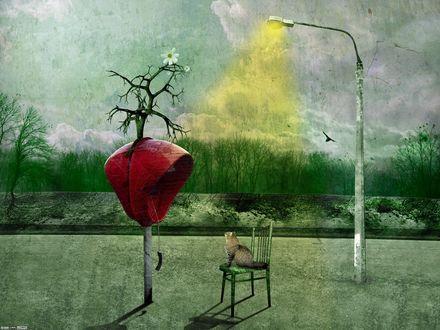 Обои Кот сидит на стуле и смотрит на красную телефонную будку, из которой растет дерево с цветком, by DarkWizard