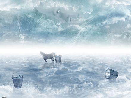 Обои Кот стоит на облаке и смотрит в одно из ведер с рыбой, на котором написан день недели, by DarkWizard