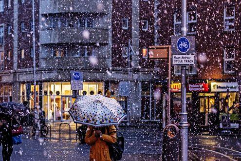 Обои Девушка под зонтом на улице города