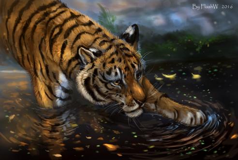 Обои Тигр ловит что-то в воде, by FlashW