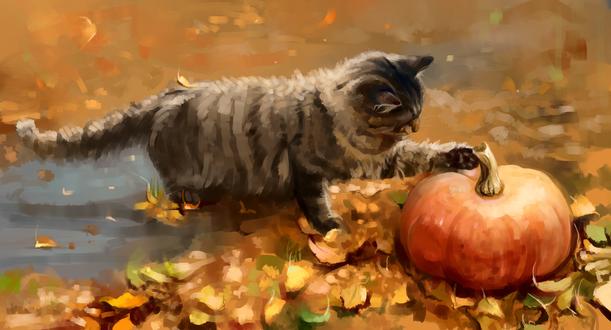 Обои Полосатый кот и тыква, by SalamanDra-S