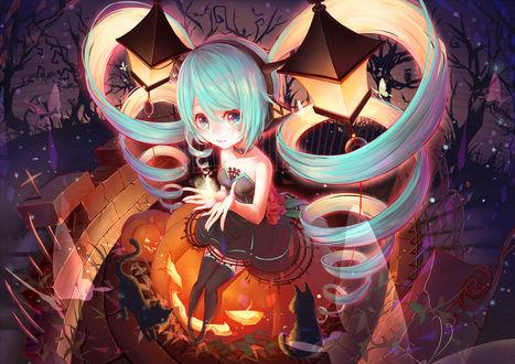 Обои Vocaloid Hatsune Miku / Вокалоид Хатсуне Мику, Halloween / Хэллоуин, art by Pixiv Id 5965153