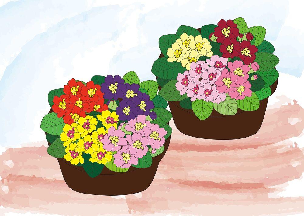 Цветы в горшках как обои