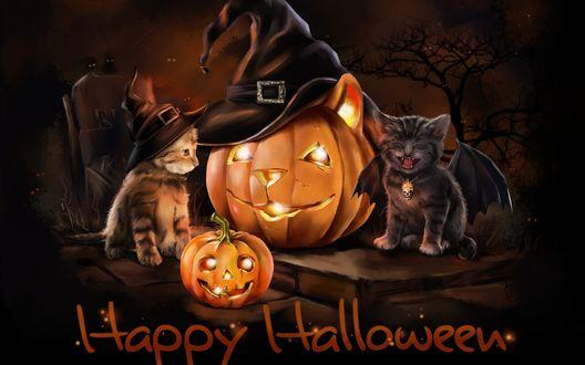Обои Котята сидят возле тыквы (Happy Halloween / Счастливого Хэллоуина)