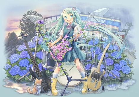 Обои Vocaloid Hatsune Miku / Вокалоид Хатсуне Мику под дождем с гитарой и микрофоном поет на фоне гортензий, рядом сидит котенок art by Kuinji 51go