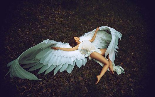 Обои Девушка-ангел лежит на земле, фотограф Леонид Мочульский