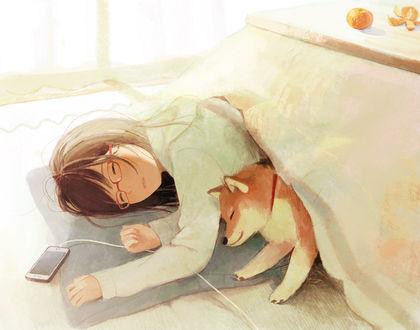Обои Девушка в очках и пес породы шиба-ину спят, by 中村ひなた