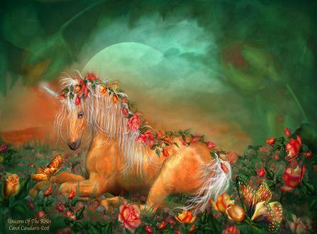 Обои Мифическое животное единорог среди роз на фоне туманного неба и полной луны, by Кэрол Каваларис / Carol Cavalaris