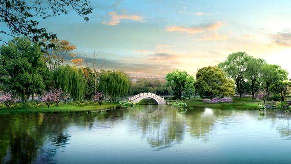 Обои Мостик над водоемом в парке среди деревьев