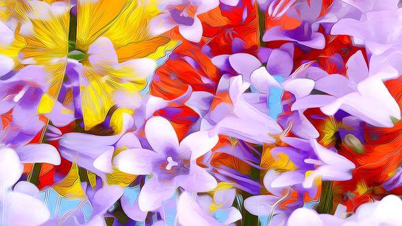 Обои Разного цвета цветы