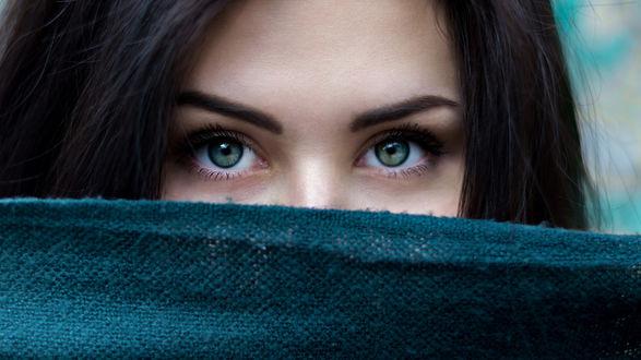 Обои Девушка с зелеными глазами наполовину прикрыла лицо шарфом