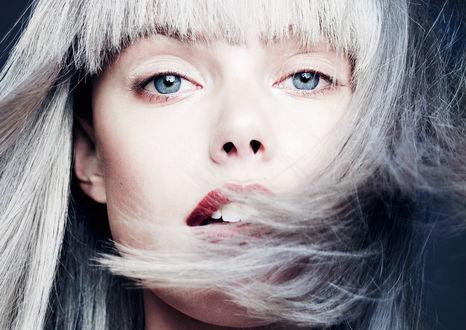 Обои Шведская топ-модель Frida Gustavsson / Фрида Густавссон с голубыми глазами