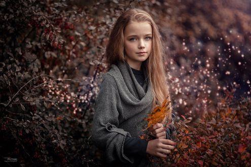 Обои Девочка с осенним листом в руке, фотограф Sergey Piltnik / Пилтник