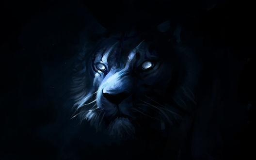 Обои Морда льва на темном фоне