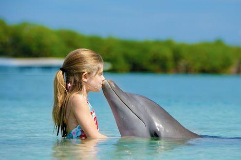 Обои Девочка целует дельфина, стоя в воде