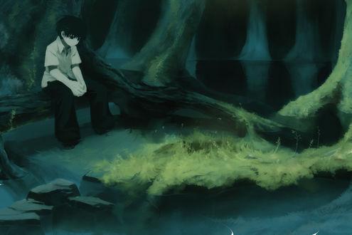Обои Мальчик сидит на дереве, by Pixiv Id 53928
