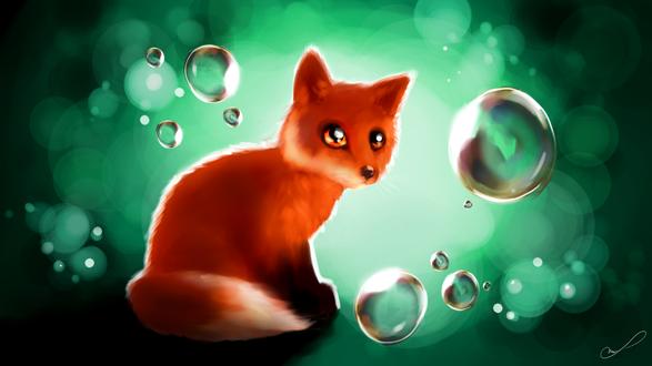 Обои Рыжий лисенок смотрит на мыльные пузыри, by Martith