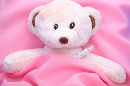 Обои Белый плюшевый медведь лежит под розовым покрывалом с градусником, голова заклеена лейкопластырем