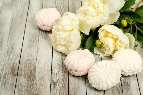 Обои Бело-розовый зефир с белыми пионами
