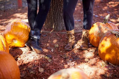 Обои Ноги девушек, стоящих у дерева