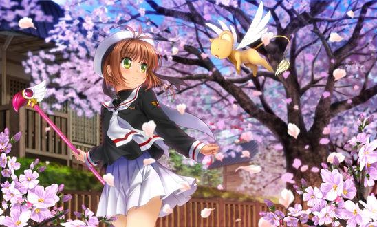 Обои Сакура Киномото / Sakura Kinomoto и летающий котенок среди цветущей сакуры из аниме Сакура - собирательница карт / Card captor sakura