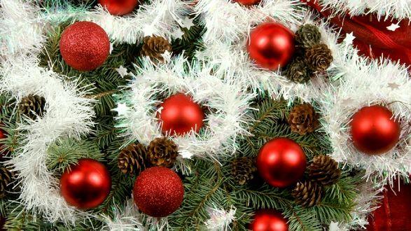Обои Красные шары с шишками и белой мишурой на еловой ветке