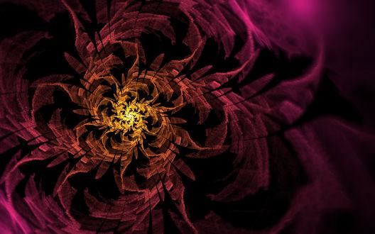 Обои Абстрактный цветок в теплых тонах