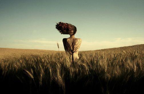 Обои Девушка с развевающимися волосами и тату в виде дерева на спине стоит в поле