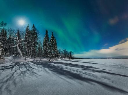 Обои Полярное сияние в феврале, фотограф Oleg_O