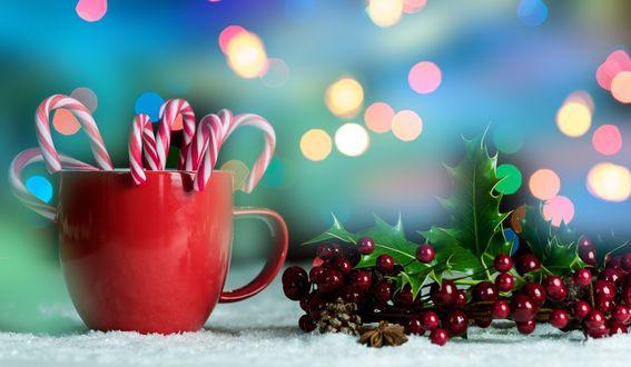 Обои Кружка с леденцами и ягоды омелы в снегу