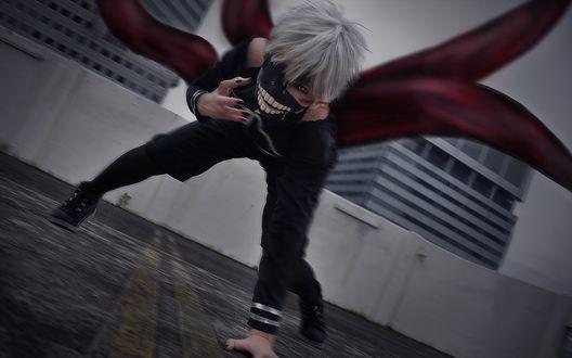 Обои Косплей Ken Kaneki / Кен Канеки из аниме Tokyo Ghoul / Токийский Гуль