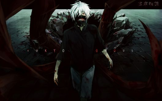 Обои Ken Kaneki / Кен Канеки из аниме Tokyo Ghoul / Токийский Гуль