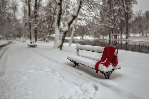 Обои Зимний пейзаж с лавочкой и забытым красным шарфом на ней, фотограф Rucsandra Calin