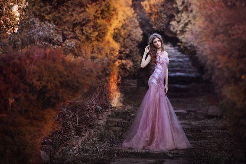 Обои Девушка в длинном розовом платье стоит на ступеньках, фотограф Ravena July